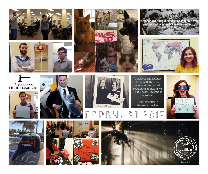 february-in-photos